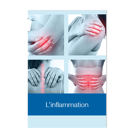 Conférence : l'inflammation